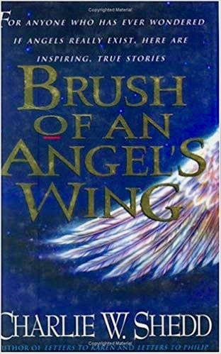 Brush of an Angel's Wing book cover